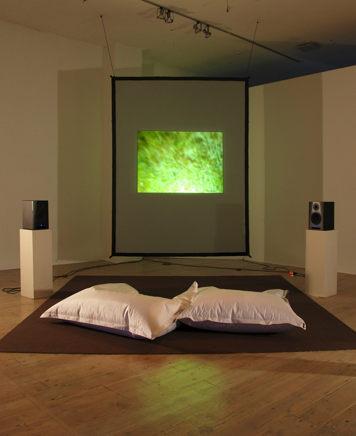 Deirdre Logue, Flip Toss (installation view), 2013. Photo courtesy of Vtape.