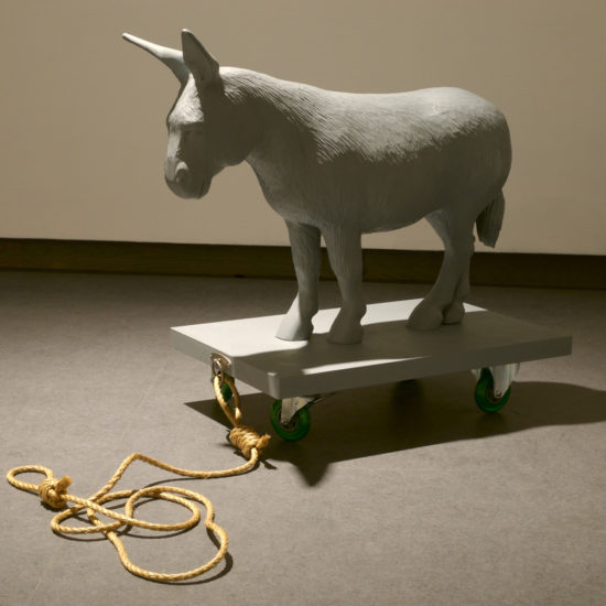 Mary Anne Barkhouse, Donkey (2008), close encounters